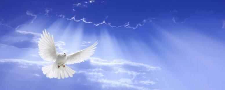Nedeľná služba-Vyliatie svätého ducha 09.06.2019