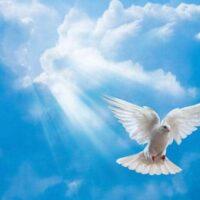Pondelok 24.05.2021 Turíce-Vyliatie svätého ducha